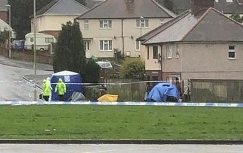 Pensnett Road stabbings