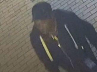 Birmingham stabbings suspect