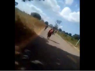 Mozambique killing